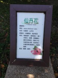 20140703台湾05